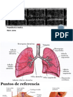 Área Pulmonar
