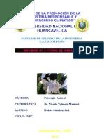 Informe 2 de Enfermedades Infeciosas