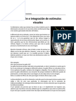 Asociación e Integración de Estímulos Visuales