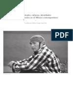Diario de Campo Suplemento No 23 Juventudes Culturas Identidades y Tribus Juveniles en El Mexico Contemporaneo