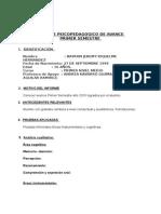 Informe Psicopedagogico de Avance 2015 Primer Semestre