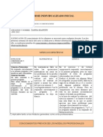 Informes Iniciales Informatica 2015
