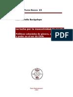 La Lucha por la masculinidad de machi - Políticas coloniales de género, sexualidad y poder en el sur de Chile - 2003
