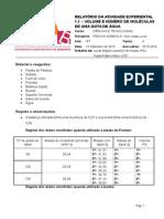 Ficha_Informativa_-_Algarismos_Significativos (3) (1)
