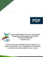 Estructura Informe Licenciados Gestion Ambiental