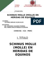 ALDO DIAPOSS.pptx