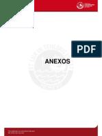 Fragmentacion Roca Anexos