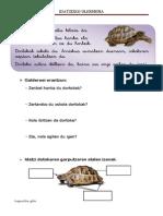 DORTOKA- Ulermena Escolar Letra
