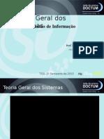 Teoria Geral de Sistemas (Tgs) Prof. Msc. Eliney Sabino