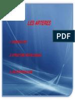 02-Les artères (Diapo).pdf