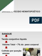 Hematopoese.ppt