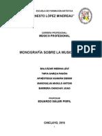 Monografía Del Método Suzuki