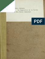 La Vegetation de La Vallee Du Rio Purus - Huber 1908