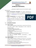 CONTABILIDAD-GUBERNMENTAL-IIIIIIIIIIIIIIIIIII