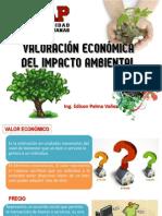 Valoracion Economica Ambiental Uap