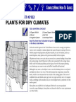 Plants for Dry Climates
