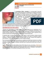07-05-2015 ANATOPATO INFECCIONES VIRALES 2.pdf