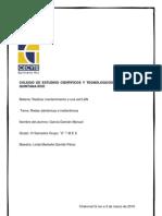 Redes Alambricas e Inalambricas Manuel Garcia Damian Complemento
