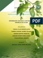 bologia enfermedades.pdf