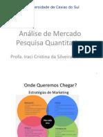Análise de MercadoPesquisa Quantitativa