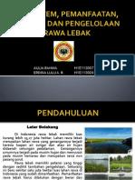 Pengelolaan Kualitas Air Daerah Rawa - Pdf Ekosistem, Pemanfaatan, Dampak dan Pengelolaan Rawa