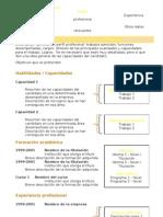 curriculum-vitae-modelo2c-marron