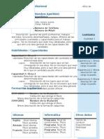 curriculum-vitae-modelo4b-azul