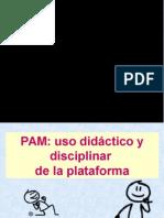 Video Conferencia Pam 2015 (1)