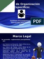 Manual de Organización Especifico