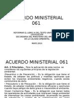 Acuerdo Ministerial 061