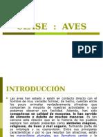 CLASE 1-Zool. Vert II.aves