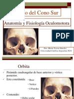 Anatom a y Fisiolog a Oculomotora