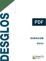pd_dsg_chile_12-13.pdf