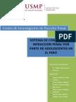 Sistema de Control de La Infraccion Penal Por Parte de Adolescentes en El Peru