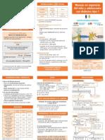 Protocolo Insulin MDI 13