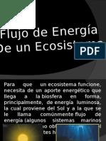 Flujo de Energia de un Ecosistema