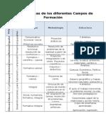 Características de Los Diferentes Campos de Formación