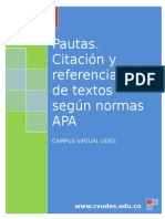 Instructivo - Pautas Normas APA 2012 CVUDES
