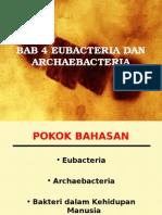 Eubacteria Dan Archaebacteria