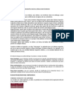 Gramatica Basica Mapuche