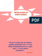 Inteligencia Emocional Aplicada a Las Organizaciones