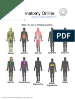 2-coordenadas anatomicas