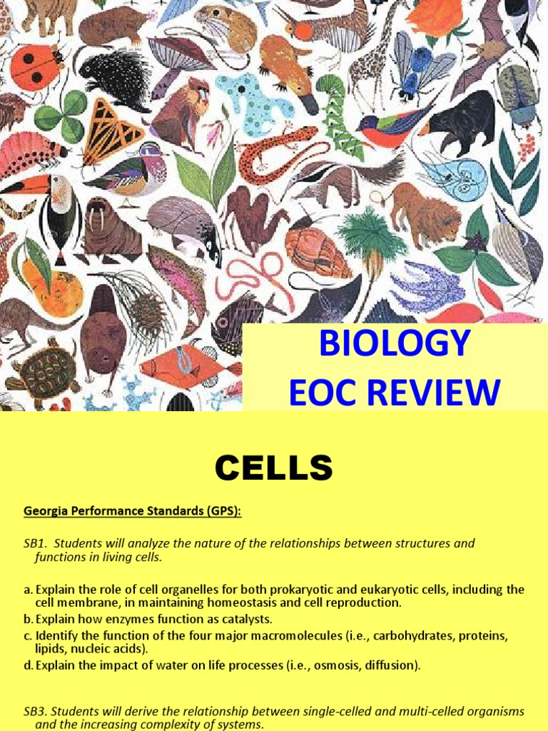 Biology EOC Review ALL Standards | Food Web | Dominance ...