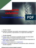 Clonarea Celulara Si Transformarea Genetica