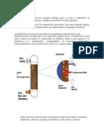 La Biofiltracion Es Un Proceso Biológico Utilizado Para El Control o Tratamiento de Compuestos Volátiles Orgánicos e Inorgánicos Presentes en La Fase Gaseosa - Copia