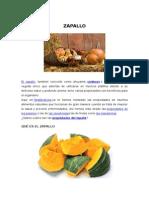 ZAPALLO23.docx