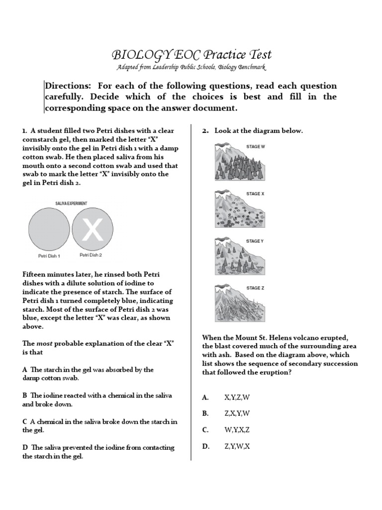 Paper Practice Test With Key Attached Dominance Genetics Cell