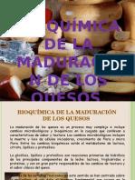 Bioquimica de La Maduracion Del Queso Diapositivas