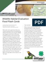 4 H 993 WHEP Foodflashcards