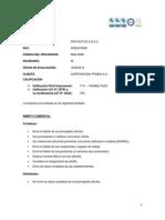 Informe de Fortalezas y Debilidades - Proyectos d s.a.c.